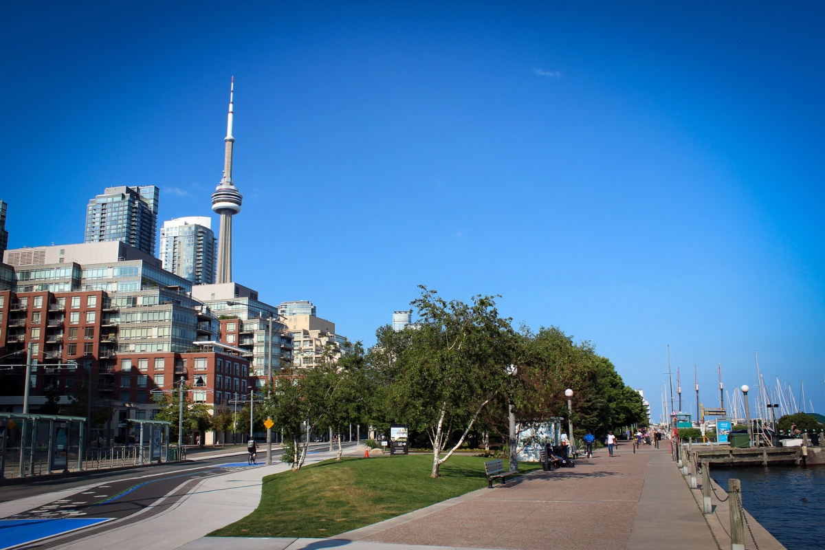Digital Main Street has helped Toronto's streets adopt digital technologies
