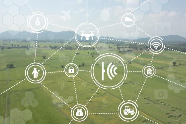 Data enables precision farming