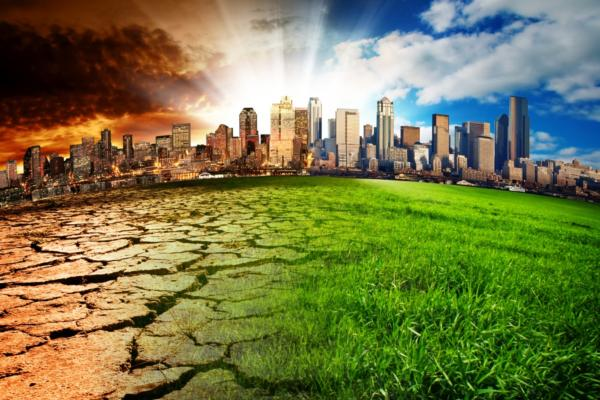 Cities urged to take bold action on climate change