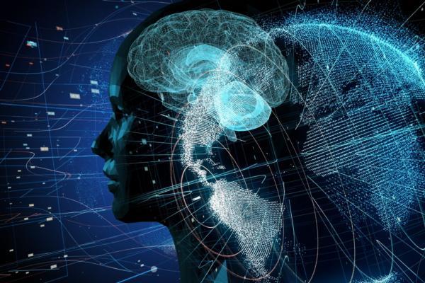 Can neuroscience help build better cities?
