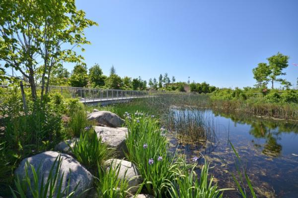 Waterfront Toronto CSR report released