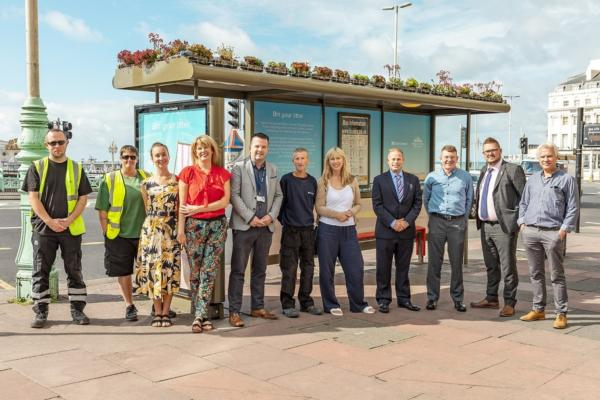 Brighton bus shelter becomes home to upcycled living roof