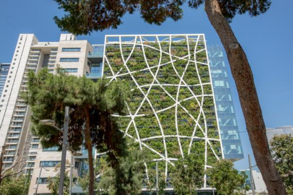Can living walls make our cities smarter and more sustainable?