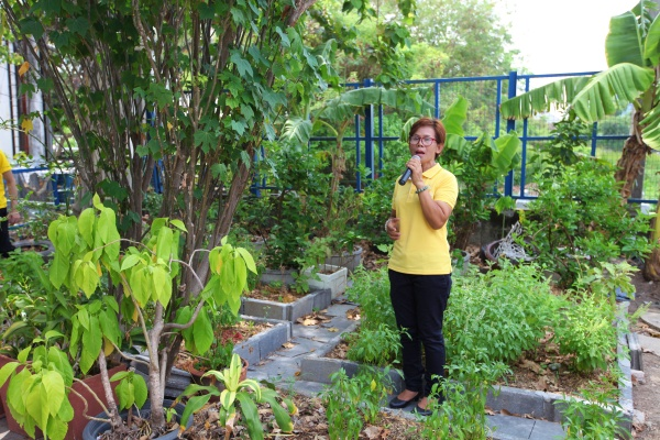 Khlong Phlabphla community urban farm. Source: All Round Plastics